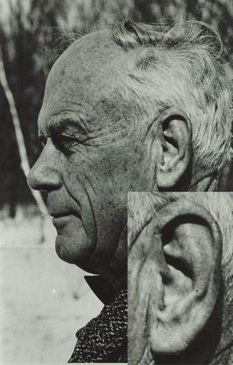 last-ear